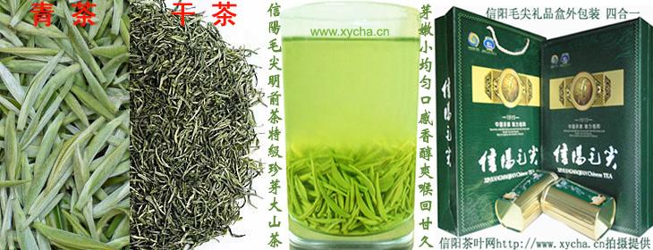明前茶信阳毛尖特级珍芽礼品茶|青雕|干茶|茶汤|礼盒装|图片