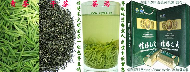 明前茶信阳毛尖一级包芽礼盒装|青雕|干茶|茶汤|图片