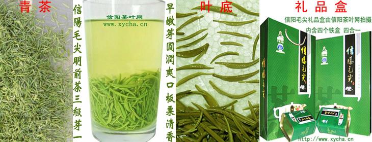 信阳毛尖明前茶三级芽叶大山茶|青雕|干茶|茶汤|礼盒装|图片