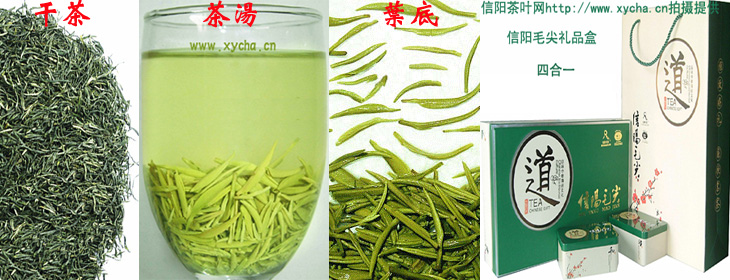 信阳毛尖雨前特级纯芽 青雕 干茶 茶汤 礼盒装 图片