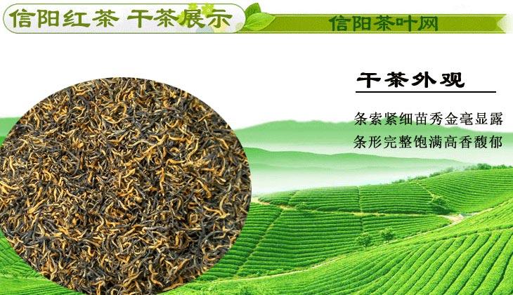 新茶信阳红茶春茶二级干茶图片