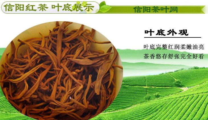 新茶信阳红茶春茶二级茶汤图片