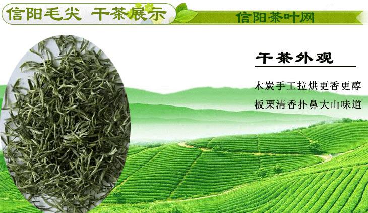 新茶信阳毛尖雨前茶二级次芽干茶图片