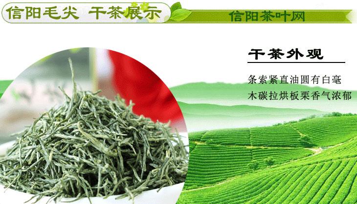 新茶信阳毛尖雨前茶一级包芽干茶图片