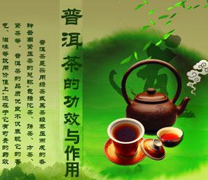 喝普洱茶的功效与作用有什么好处和禁忌