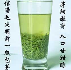 信阳毛尖属于什么茶_信阳毛尖属于绿茶吗